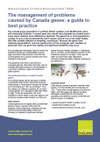 The management of problems caused by Canada geese: a guide to best practice (Thumbnail link to record)