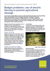 Badger problems: use of electric fencing to prevent agricultural damage (Thumbnail link to record)