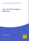 Isles of Scilly seagrass mapping (Thumbnail link to record)