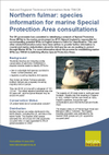 Northern fulmar: species information for marine Special Protection Area consultations (Thumbnail link to record)