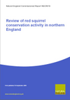 Review of red squirrel conservation activity in northern England (Thumbnail link to record)