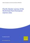 Pacific Oyster survey of the North East Kent European marine sites (Thumbnail link to record)
