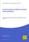 Conservation of ribbon-leaved water-plantain: Current status, the species recovery programme and future outlook (Thumbnail link to record)