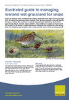 Illustrated guide to managing lowland wet grassland for snipe (Thumbnail link to record)