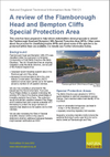 A review of the Flamborough Head and Bempton Cliffs Special Protection Area (Thumbnail link to record)