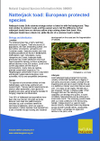 Natterjack toad: European protected species (Thumbnail link to record)