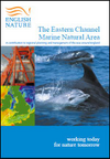 The Eastern Channel Marine Natural Area (Thumbnail link to record)