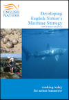 Developing English Nature's Maritime Strategy – State of Nature one year on (Thumbnail link to record)