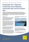 Proposals for a Special Protection Area between Falmouth Bay & St Austell (Thumbnail link to record)