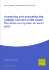 Assessing and evaluating the cultural services of the South Pennines ecosystem services pilot (Thumbnail link to record)