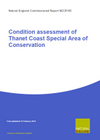 Condition assessment of Thanet Coast Special Area of Conservation (Thumbnail link to record)
