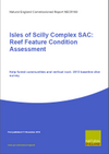 Isles of Scilly Complex SAC: Reef Feature Condition Assessment - Kelp forest communities and vertical rock: 2013 baseline dive survey (Thumbnail link to record)
