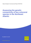 Assessing the genetic connectivity of two octocoral species in the Northeast Atlantic (Thumbnail link to record)