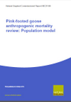 Pink-footed goose anthropogenic mortality review: population model (Thumbnail link to record)