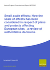 Small-scale effects: How the scale of effects has been considered in respect of plans and projects affecting European sites - a review of authoritative decisions (Thumbnail link to record)