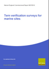 Tern verification surveys for marine sites (Thumbnail link to record)